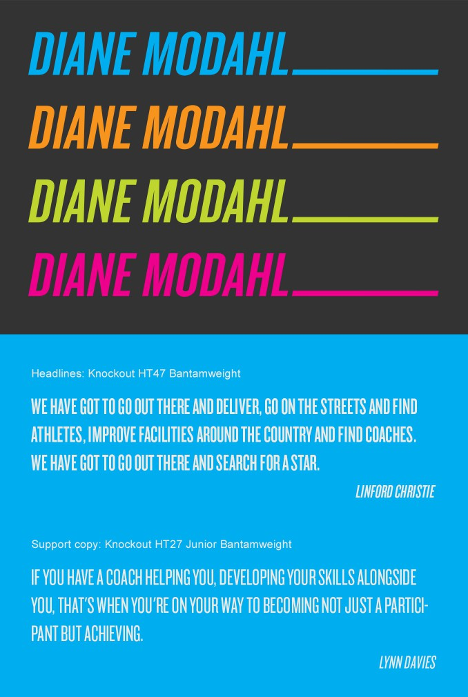 Diane Modahl personal brand and supporting typeface.